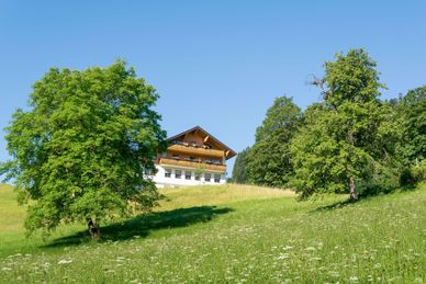 7 Tage Yoga Retreat in den Bergen