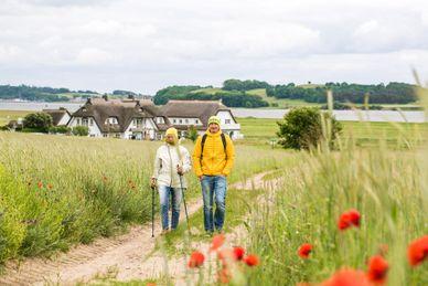 6 Tage Yoga und Wandern an der Ostsee (Sonntags beginnend)